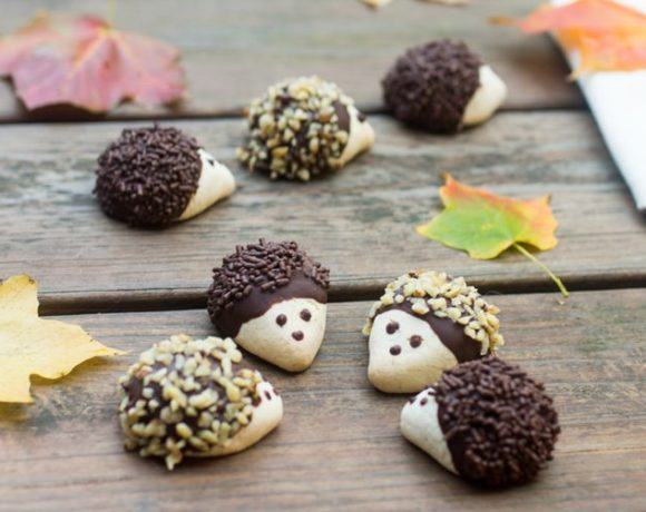 europe times european news trendy cookery cooking recipe food dishes Mouth Watering Hedgehog Cookies